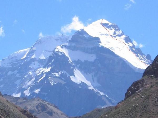 Mt. aconcagua photos - primarily nocturnal arthropods ...